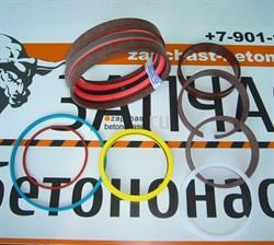 Ремкомплект стрелового гидроцилиндра 1069-165/105 Putzmeister - фото 8304